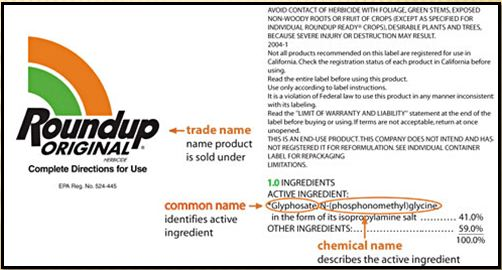 how to find out an anion chemical name