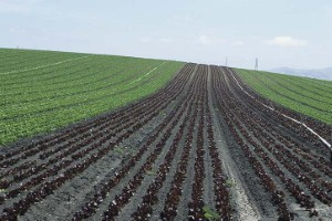 Usda looks to change definition of rural for funding for Usda rural development louisiana